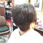 ヘナとキュビズムカットを続けていたら、ホントに髪で悩まなくなった。